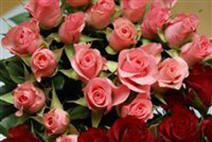 Picture of 12 Pink Sweetheart Roses