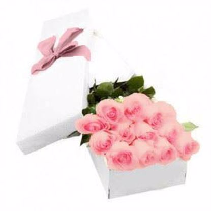 Picture of 12 Pink Roses